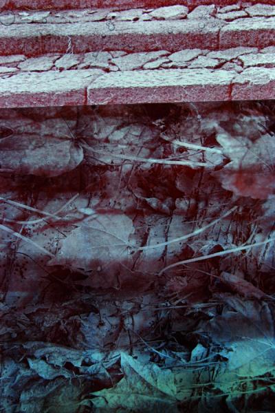 Mare Saare - Jaapan: järelkujutis (2011, klaas, digitaaltrükk, põletus, lamineeritud, 550 x 400 mm)