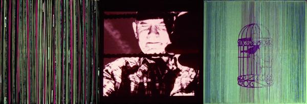 Laura Põld. Kuidas portreteerida lindu (Jacques Prévert'i samanimelise luuletuse ainetel) (2010, tekstiil, videoprojektsioon, tikand, 435 x 145 cm). Detail