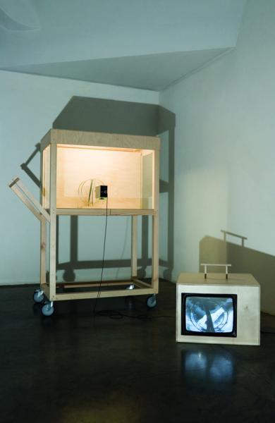 Visible Solutions OÜ. Adam Smithi lemmik nähtamatu käsi puuris (2010, installatsioon, vineer, klaas, video, tekst valguskastil; 1018 × 1430 × 640 mm)