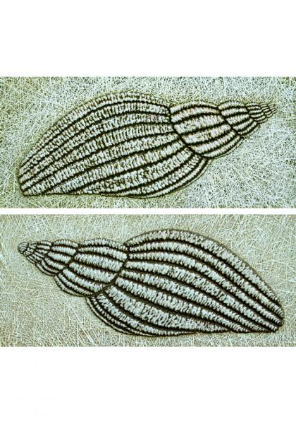 """Siim-Tanel Annus – Two paintings from the series """"Shells"""" (2009, acrylic on canvas, 63 x 28"""