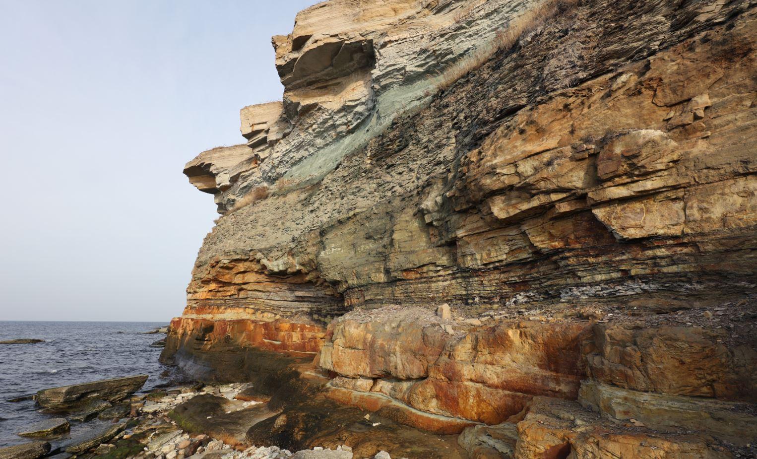 Pakri panga geoloogiline profiil. Keskosas (ordoviitsiumi lubjakivide all) on roheline glaukoniidi kiht tumepruuni graptoliitargilliidi peal. Foto: Olle Hints