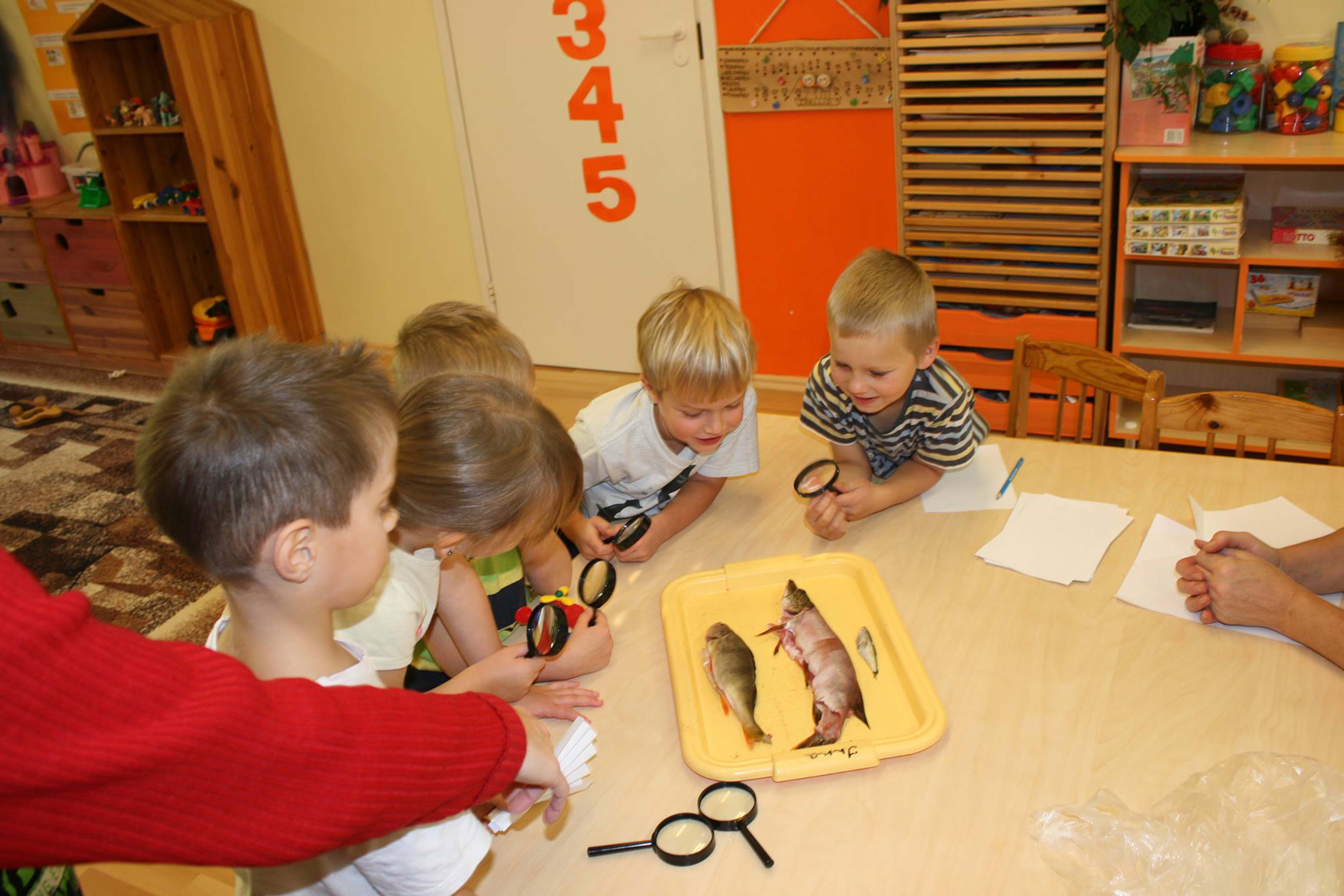 """Õpime kalu lähemalt tundma. Piltidel on """"Ettevõtliku kooli"""" programmi kuuluva Voka lasteaia Naksitrallid lapsed. – http://vokalasteaed.edu.ee/. Fotod: Berit Baun"""
