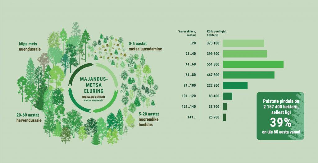 JOONIS 3. Kui vana on meie mets? Metsaga metsamaa ehk puistute pindala vanuseline jagunemine. Allikas: Keskkonnaagentuur