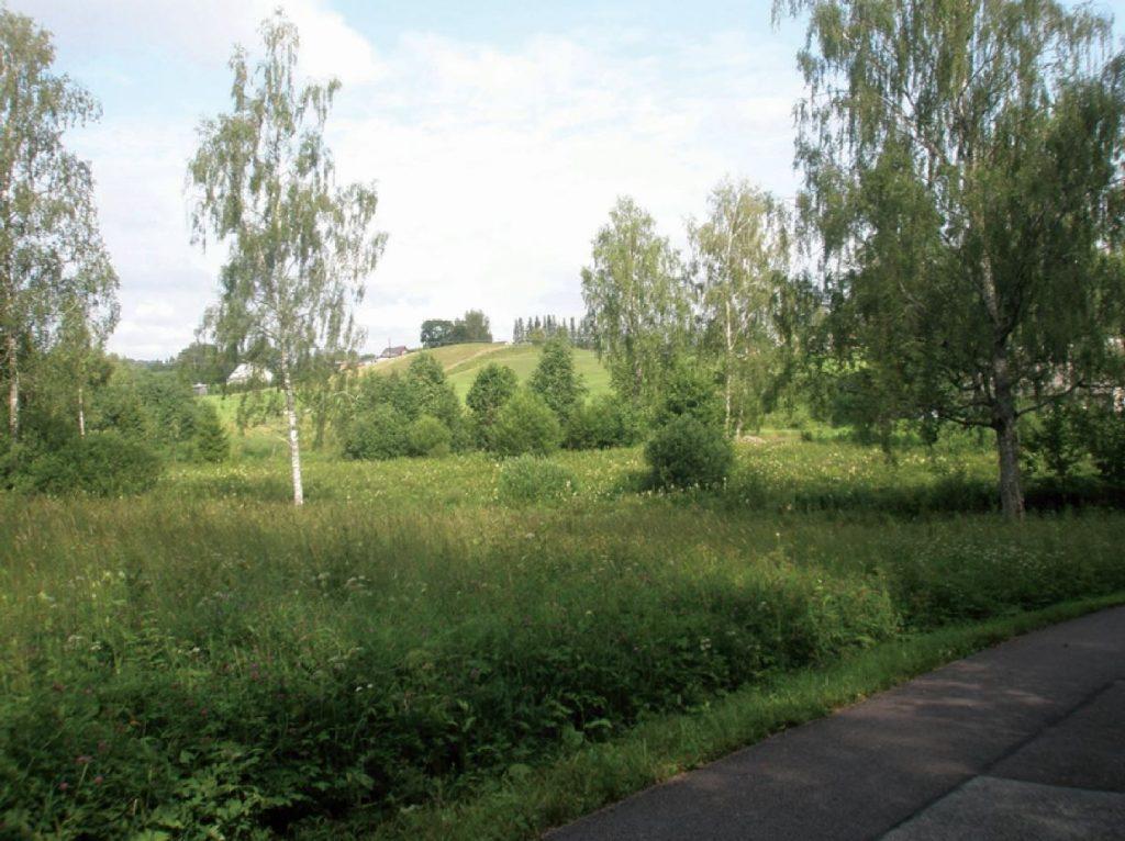 Õnneks on Eestimaal veel piisavalt rohelust, kus silmi ja närve puhata ning häid mõtteid koguda. Foto: erakogu
